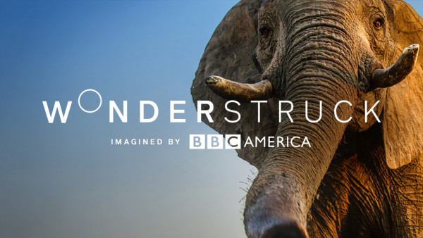 Wonderstruck by BBC America