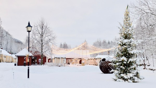 A Norwegian Christmas with Viking Guides Ekaterina and Stian