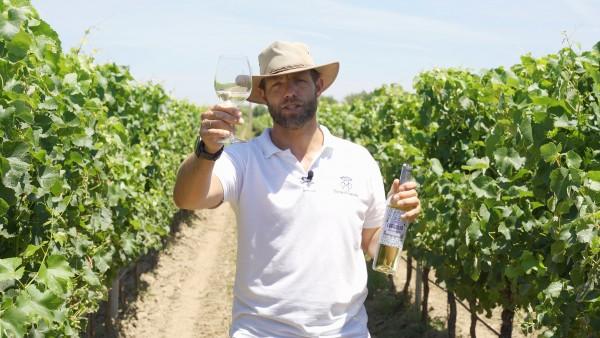 At home in Portugal's Quinta da Lagoalva de Cima with winemaker Diogo Campilho