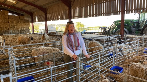 At Home at Highclere Castle: Lambing