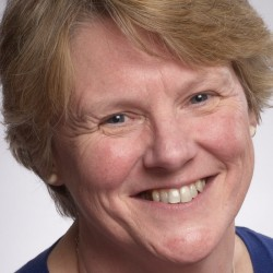 Jill Cook, DPhil FSA